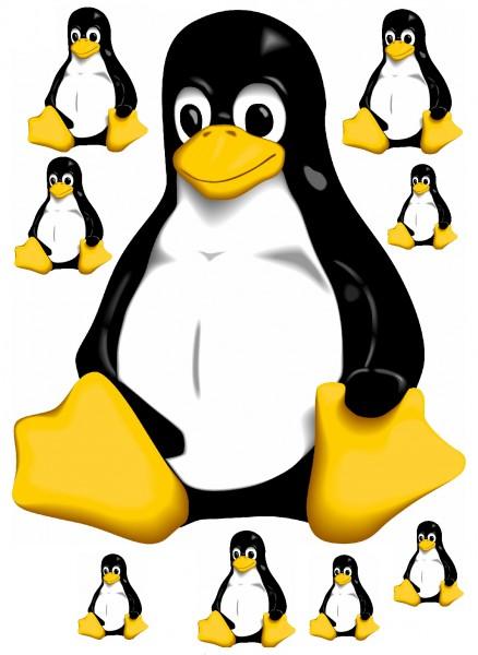 Maxi-Sticker - Tux Pinguin A4